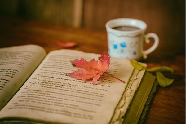 Nouvo nella biblioteca: Circolo di lettura Berivka