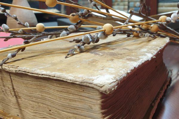 Razstava: Legendarni Koper – Capodistria illustrata