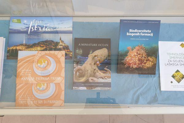 MOSTRA: Nuove letture del 2020 da Pirano ad Ancarano